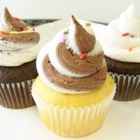 Vanilla and Chocolate Cupcake