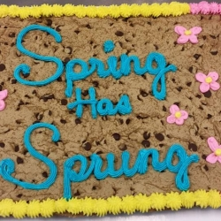 Spring Has Sprung Chocolate Chip Cookie Cake