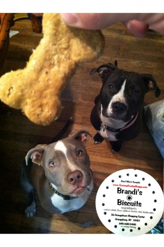 Brandi's Biscuits 3