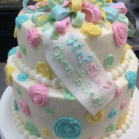 16017 He She Open to See Baby Shower 2 Layer Round Cake