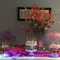 17019 Cake Pops Cupcakes Mini Cakes Dessert Bar Catering