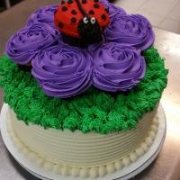 17018 Ladybug Round Cake