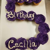 Happy 5th Birthday Cecilia Cupcake Cake